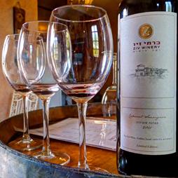טעימת יינות בכרמי זיו