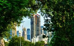 אלבום צמיחה עירונית - Urban growth